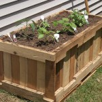 Build a Planter with pallets