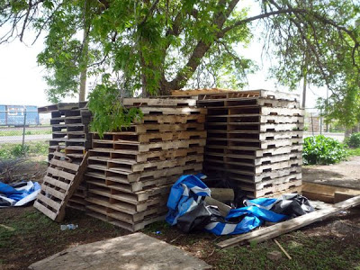 farm_production_center_made_of_pallets_2