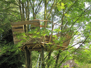 pallet tree house 4 Pallet tree house for our children