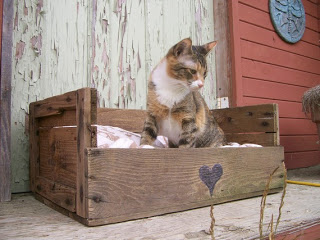 pallets pet bed Pet bed made of pallets