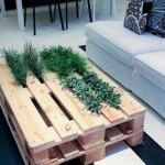 2 in 1 table and plants of pallets