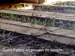 House made with pallets in Chile3