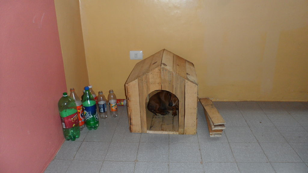 pallet_or_fruit_box_diy_dog_house12