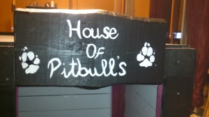 Double kennel made with wooden pallets3