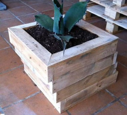 Nice wooden pallets original ideas for gardening: