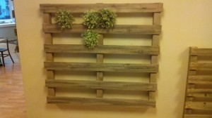 Vertical garden made with pallets3