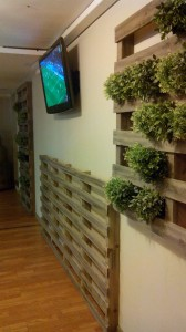 Vertical garden made with pallets7