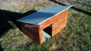 caseta para perros de palets 300x168 Video of how to make a doghouse with pallets
