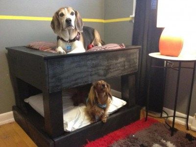 Bunkbeds for dogs made ​​with pallets 4
