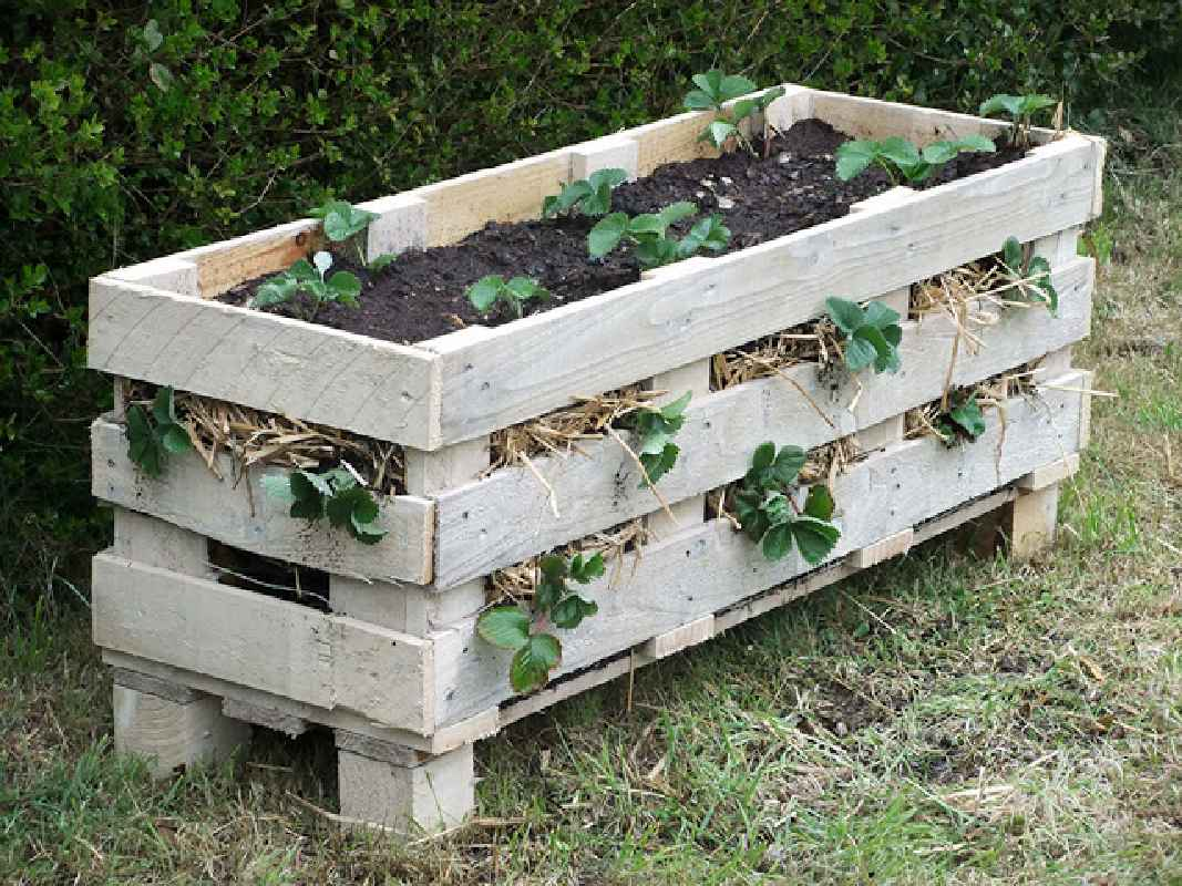How to make a planter with a single palletdiy pallet for Making planters from pallets