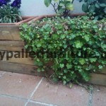 How to make a pallet screen to cover a planter