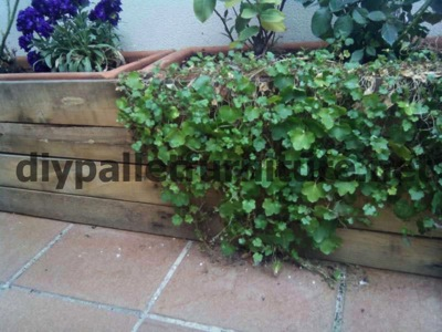 How to make a screen to cover a pallet planter