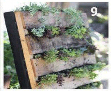 Instructions of how to create a green wall with a single pallet 9