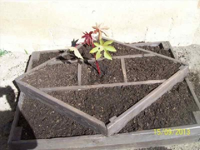 Instructions of how to make a planter with geometric shapes 3