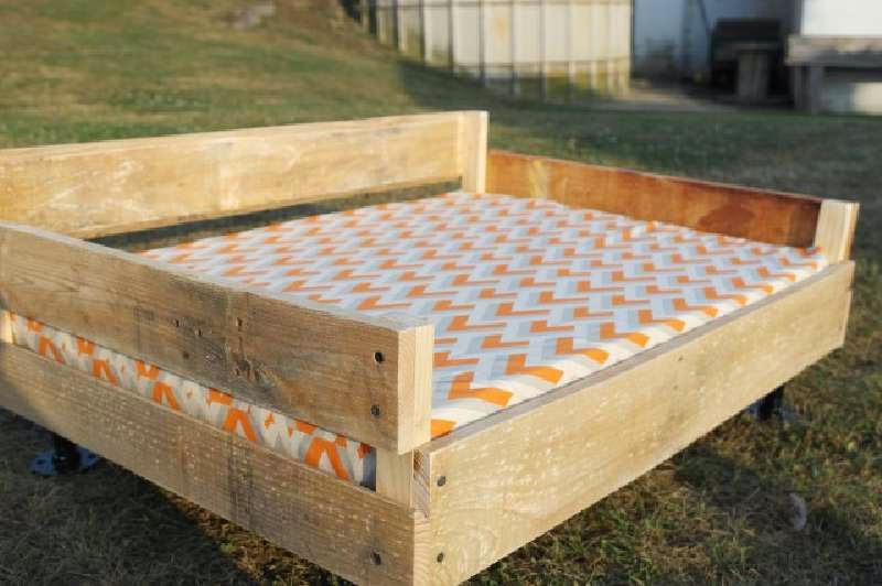 Build A Pallet Bed For Your Petsdiy Pallet Furniture Diy