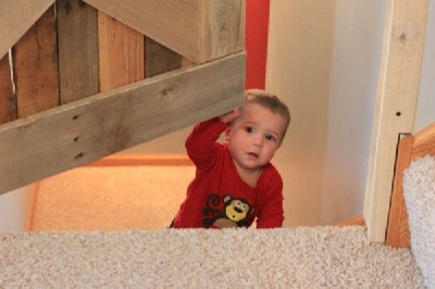 Plans to build a small door and safeguard your babies 1