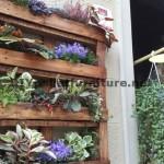 Urban Decor using pallet planters