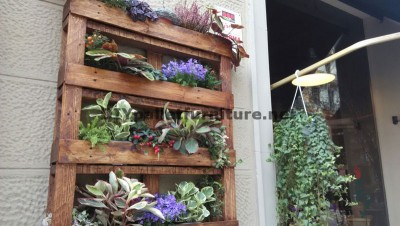Urban Decor using pallet planters 1