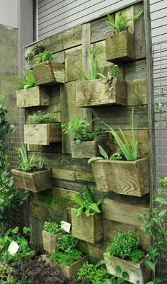 Vertical garden design built using pallet planksdiy pallet for How to make a vertical garden using pallets