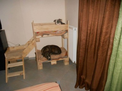 Pet cribs ideas built with pallets 12