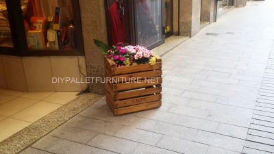 Planters improvised with fruit boxes 1