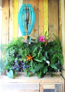 A tropical paradise with pallets 3