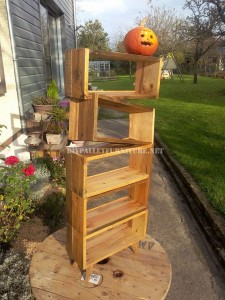 Design bookcase made of pallet planks 8