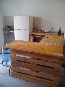 Furnished house with pallets 3