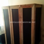 Wardrobe made with pallet planks and polypropylene sheets