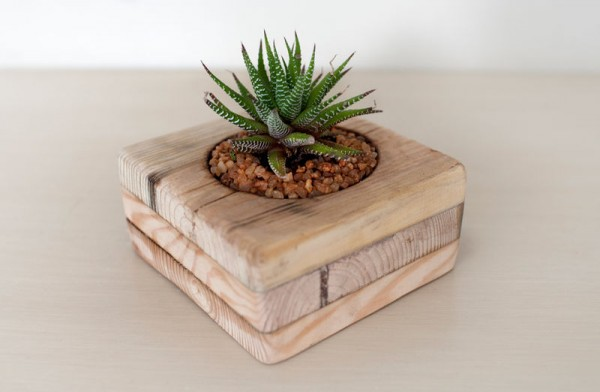 Indoor small pots made with pallets 2