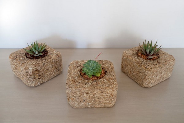 Indoor small pots made with pallets 4