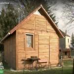 Little villa built with pallets