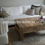 Living room table with pallets