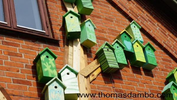 Happy city birds, a school project for children with pallets 3