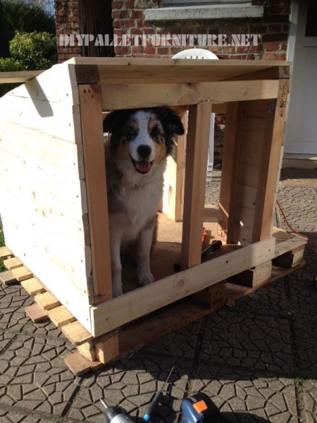 Pallets doghouse 3