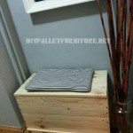 Trunk and seat made with pallet planks