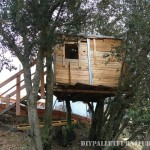 A treehouse with pallets