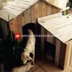 Great pallet Doghouse