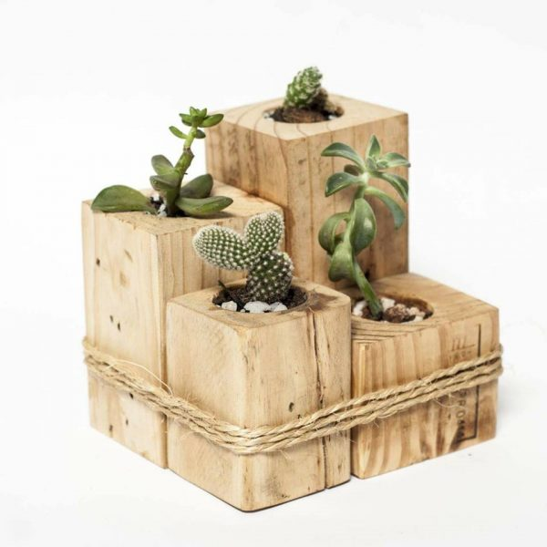 Diy pallet furniture - Estantes para plantas ...